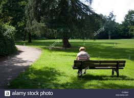 bench berlin berlin germany an old lady sitting alone on a park bench stock