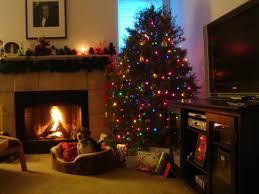 fireplaces u2013 practical advice pros and cons u2013 fresh design pedia