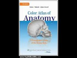 Colour Atlas Of Human Anatomy Health Book Review Color Atlas Of Anatomy A Photographic Study