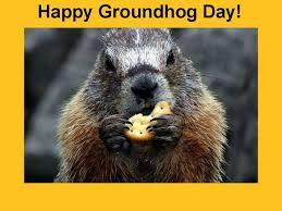 groundhog day cards 107 best holidays groundhog day images on ground hog
