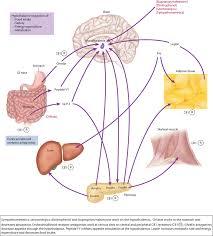 food diet and nutrition goldfrank u0027s toxicologic emergencies