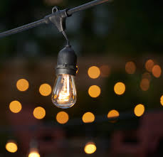 Bulbrite Decorative String Lights from Topbulb