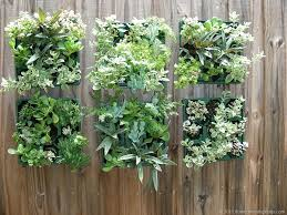 Vertical Gardening by Succulents Vertical Garden Florida Friendly Plants Great Site