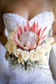 wedding flowers johannesburg best 25 south weddings ideas on protea