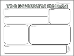 free printable scientific method graphic organizer weareteachers