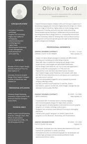 Best Resumes Formats by 99 Professional Resume Formats U0026 Designs