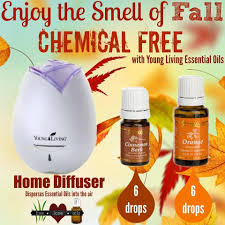 young living essential oils diffuser youngs essential oils