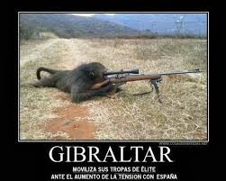 An Hero Meme - spanish memes mock britain comparing hero soldiers to gibraltar s