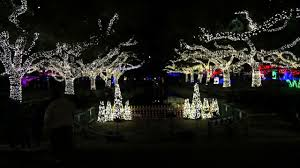 Zoo Light Chicago by Christmas Lights Paul Michaels