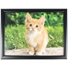 lost kitten tv lap tray breakfast dinner food bean bag cushioned