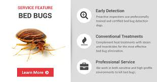 Kill Bed Bugs Commercial Bed Bug Treatment Control U0026 Prevention Copesan Pest