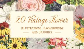 flower images 20 vintage flower illustrations backgrounds and graphics
