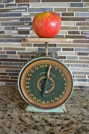 Vintage Montgomery Ward Family 25 Pound Scale Vintage Rustic