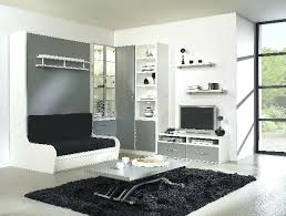 armoire lit avec canapé armoire lit avec canape lit lit 1 lit armoire canape avec couchage