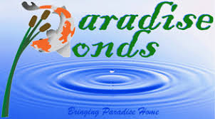 Meyer Aquascapes Texas Pond Contractor Builder Certified Aquascape Contractor Water