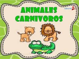 imagenes de animales carnivoros para imprimir animales carnívoros herbívoros y omnívoros by editorial md tpt