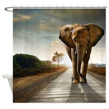cool elephant shower curtain by creativeconceptz