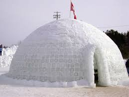 now that u0027s an igloo snow forts