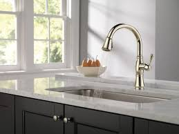 Polished Nickel Kitchen Faucet 9197pndst In Polished Nickel By Delta Faucet Company In Atlanta
