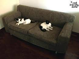 sofa material for cats breathtaking cat proof couch best of pet or dog material adorable
