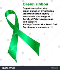 cerebral palsy ribbon green ribbon organ transplant organ donation stock illustration