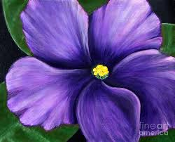 acrylic paintings of violets violet painting by barbara griffin