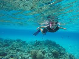 snorkeling in mnemba atoll zanzibar little foot adventures