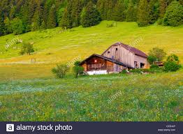 Col House by Col Des Mosses Switzerland Europe Canton Vaud Mountain Wood