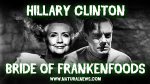 Hillary Clinton Cell Phone Meme - monsanto news articles and information