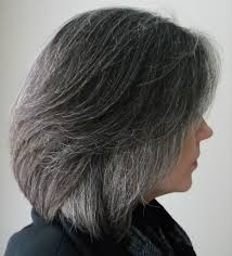 Grey Hair With Dark Highlights Transitioning To Gray Hair From Dyed Hair Hairstyles Ideas