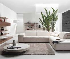 beauteous small apartment livingroom photos decorating ideas decor