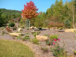 beautiful fall color boulder and rock selection placement