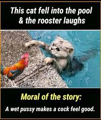 Funny Feel Good Memes - it s funny because of the clever double meaning comedycemetery