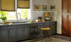 3d Kitchen Designs Perfect Diy Kitchen Cabinets On A Budget Tags Diy Kitchen