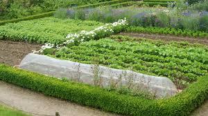 an introduction to crop rotation rocket gardens
