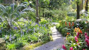 Botanical Garden Naples by Botanical Garden La Mortella In Ischia New World Landscaping