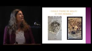 cellular u0026 molecular effects of mold and mycotoxins dr janette