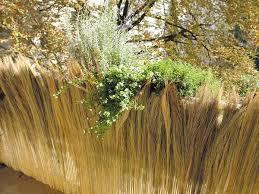 balkon bambus sichtschutz farnmatten sichtschutz aus farnhalmen für den balkon