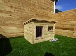 insulated dog house ireland funky cribs