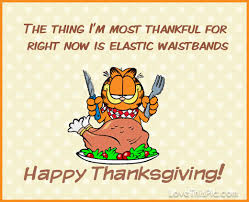 garfield happy thanksgiving quote pictures photos and images for