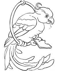 parrots coloring pages beautiful parrot coloring page download u0026 print online coloring