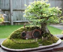 miniature trees bonsai trees tooxta world of