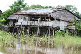 House Plans On Stilts by Houses On Stilts Rise Above Amazon River Basin Near Iquitos