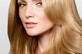 light golden brown hair color light golden brown hair color chart medium hair styles ideas 46667