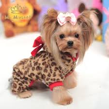 aliexpress com buy leopard print dog clothes spring autumn and