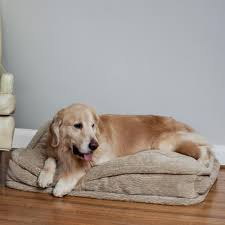 pillow top dog bed replacement cover snoozer pillow top dog bed show dog 9 colors