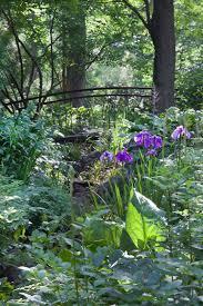 Urban Garden Woodland Hills - garden guide