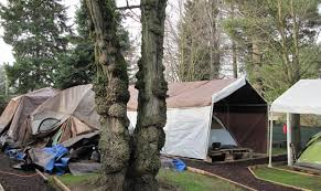 Tent In Backyard by Shoreline Man Opens Homeless Tent Camp In His Backyard