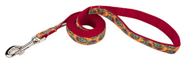 dog ribbon buy sugar skulls ribbon dog leash online