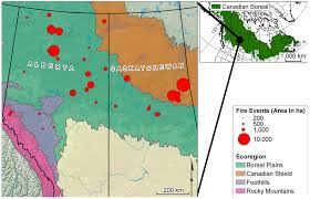 Canadian Wildland Fire Training by Forests Free Full Text Vegetation Mortality Within Natural